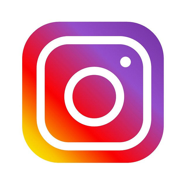 Instagram,Twitter のロゴマークをクリックして直接アクセス! - Clémentine (produced by CEDO)